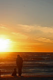 женщины собаки пляжа Стоковое Изображение RF