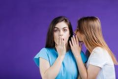 Женщины сплетни Стоковые Фото