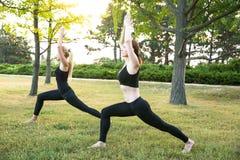 Женщины спорта делая йогу снаружи в утре Стоковое Изображение RF
