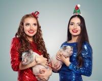 Женщины счастливого рождеств в платье партии и маленьких свиньях Портрет рождества и Нового Года стоковые фото