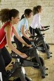 женщины тренировки bikes молодые Стоковое Фото