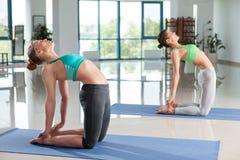 2 женщины тренируя йогу на спортзале Стоковое Фото