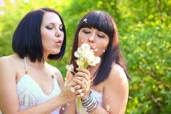 2 женщины дуя на одуванчике в парке лета Стоковая Фотография