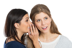 2 женщины шепча секрету Стоковая Фотография