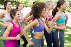 Женщины jogging в парке Стоковое Изображение RF