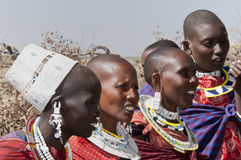 женщины masai Стоковое фото RF