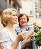 2 женщины seniore выпивая чай Стоковые Изображения RF