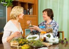 2 женщины seniore с травами Стоковое Изображение