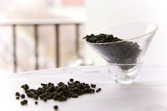 женьшень покидает чай oolong Стоковое фото RF