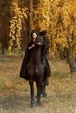 Жеребец лошади Frisian смешно делает стороны и трясет его голову под девушкой horsewoman в черноте стоковые фотографии rf
