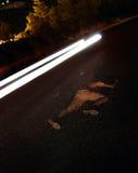 жертва дороги аварии Стоковые Изображения RF