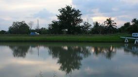 Жестикулируйте и развевайте воду в сельской местности watercourseat канала пока время захода солнца сток-видео