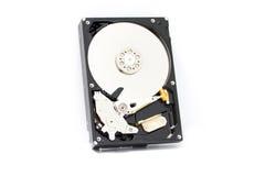Жесткий диск на белой предпосылке Стоковая Фотография