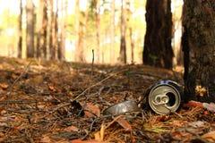 Жестяная коробка и стеклянная бутылка на траве в лесе Стоковое Изображение