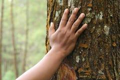 Жест показа руки, версия 11 стоковая фотография rf