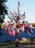 Желает дерево Стоковое Фото