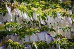 Желания на дереве, дворце мира, Гааге Стоковое Изображение