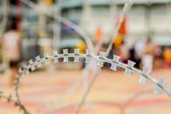 Железная колючка Стоковое Фото