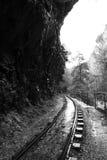 Железная дорога вдоль гор Стоковые Изображения