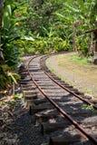 Железная дорога/железнодорожный путь узкой колеи стоковая фотография rf