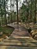 Железная дорога смерти в парке нации истории том туристическая достопримечательность Таиланда Стоковое Фото