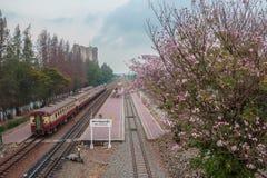 железная дорога Стоковые Изображения RF