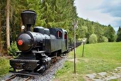 Железная дорога Ciernohronska в деревне Cierny Balog, Словакии Локомотив на вокзале в Cierny Balog стоковые фотографии rf