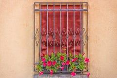 Железное grating окно Стоковые Фотографии RF