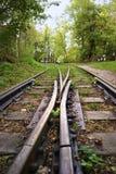 2 железнодорожного пути узкой колеи, дивергентные следы Стоковое Изображение