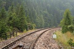 Железнодорожные пути в лесе Стоковые Фото