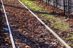 Железнодорожные пути отрезали до конца древесины в голубом Ридже, Georgia осени стоковая фотография rf