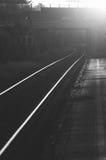 Железнодорожные следы на заходе солнца стоковые изображения