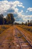 железнодорожные следы Стоковое Фото
