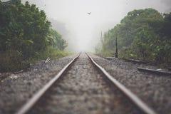 Железнодорожный путь в тумане утра стоковые изображения