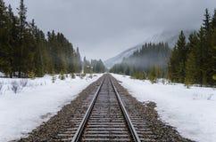 Железнодорожный путь через лес Snowy Стоковые Фотографии RF