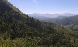 Железнодорожный путь Badulla Коломбо Стоковое фото RF