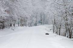 Железнодорожный путь Snowy Стоковые Изображения RF