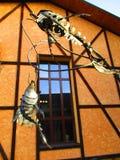 Железные рыбы на крюках, Kamenets Podolskiy, Украина Стоковые Изображения