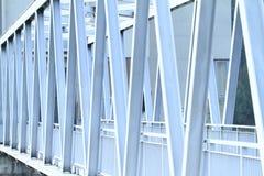 Железный усовик Стоковые Фото