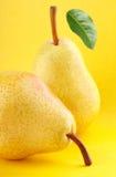 Желтая груша приносить с зелеными лист груши на желтой предпосылке Стоковые Изображения