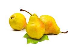 Желтая груша Стоковые Фотографии RF