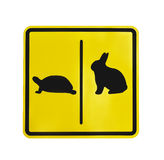 Желтая изолированная пиктограмма черепахи и кролика ярлыка движения стоковые фото