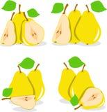 Желтая иллюстрация груш Стоковое Изображение RF