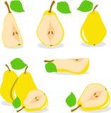 Желтая иллюстрация груш Стоковые Фотографии RF