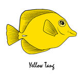Желтая иллюстрация рыб аквариума соленой воды тяни Стоковая Фотография RF