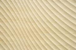 Желтая керамическая плитка с изогнутыми линиями Стоковая Фотография RF