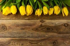 Желтая поздравительная открытка строки тюльпанов Стоковое Изображение RF