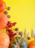 Желтая предпосылка осени Фестиваль сбора осени Стоковые Изображения