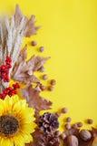 Желтая предпосылка осени Фестиваль сбора осени Стоковое Изображение