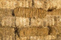 Желтая предпосылка текстуры стены связки соломы Стоковая Фотография